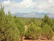 0 Loma Parda Road Mountainair NM, 87036