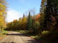 40 Acres Mail Route Rd Phelps WI, 54554