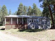 1001 Pine Valley Bayfield CO, 81122