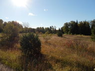 Golfview Drive Lot 77 Wolverine MI, 49799