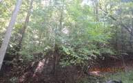 1184 Greeley Lot 1184 Em Ellijay GA, 30540