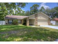17734 Morninghigh Drive Lutz FL, 33549