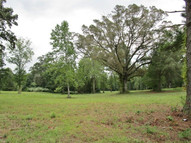 3+/- Acres Country Club Road Roanoke AL, 36274