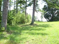 Lot 5 White Willow Court Easley SC, 29642