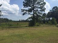 85 Acres Hendrix Rd. Lumberton MS, 39455