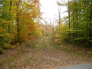 Lot 3 Lake Rd Webster NH, 03303