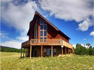 2777 High Creek Road Fairplay CO, 80440