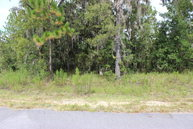 Lot 5 74th Ave High Springs FL, 32643