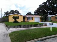 1741 Dander Drive Holiday FL, 34690