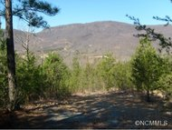 Lot 33 Deep Gap Farm Road East Mill Spring NC, 28756