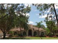 1009 Emerald Creek Drive Valrico FL, 33596