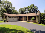 46 Cricket Hill Lane Lampe MO, 65681