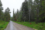 Lot 41 Rees Subdivision Alpine WY, 83128