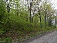 East Mountain Rd Pleasant Mount PA, 18453