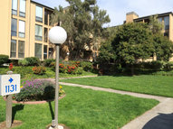 1131 Compass Ln #203 Foster City CA, 94404