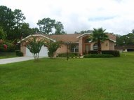 3786 S Emma Jane Terrace Homosassa FL, 34448