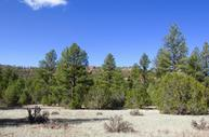 Lot 12 Culebra Road Ramah NM, 87321
