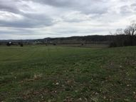Lot 21 Smelcer Rd Mohawk TN, 37810