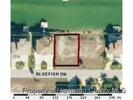3423 Bluefish Dr Hernando Beach FL, 34607