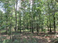 00 Vacant Land County Road 2660 Willow Springs MO, 65793