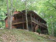 49 Moody Cove Road Weaverville NC, 28787