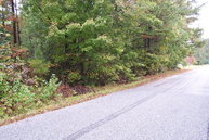 13 Acres Pleasant Grove Rd Brodnax VA, 23920