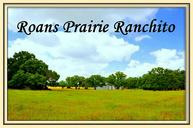 10160a Highway 90 North Roans Prairie TX, 77875