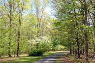 Lot 6 Watts Dr Frankford WV, 24938