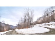Lot 9 Back Forty Road Lincoln NH, 03251