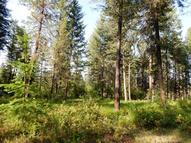 6xx Tbd Lot B Deer Meadow Way Kettle Falls WA, 99141