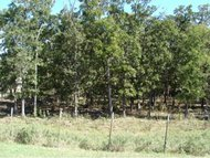 Lot 7 Hwy 69 Mcalester OK, 74501