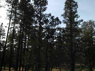 4 Acres Porter Mountain And Sponsellor Lakeside AZ, 85929
