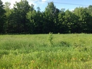 37.14 Acres Weston Avenue Ringle WI, 54471