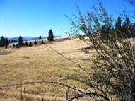 Tbd Pleasant Valley Rd Rice WA, 99167