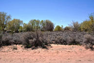 Lot 80 W Ella Drive Corrales NM, 87048