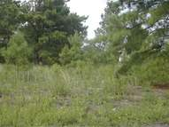 Lot 9d Peachtree Road Marion SC, 29571