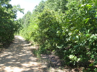 16.38 Acres Layer Lane Harrisburg AR, 72432