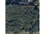 S Saint Cloud Avenue Valrico FL, 33594