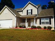 226 Turkey Ridge Court Chapin SC, 29036
