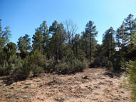 4180 W Sugar Pine Loop Show Low AZ, 85901