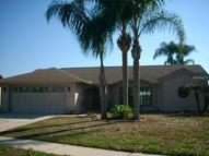 12010 Littleberry Court Tampa FL, 33635