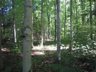 9.5 Acres Cr-397 Newberry MI, 49868