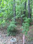 Lot 3 Vintage L Cosby Circle Greensboro GA, 30642