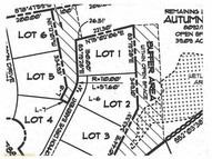 Lot 2 Jessica Way Poland ME, 04274