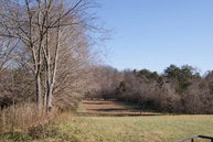 60 Ac Brady Road Moss TN, 38575