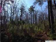 0 Woolfolk Rd 3 Acres Munford AL, 36268