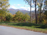 Lot 8&9 Longstreet Court Weaverville NC, 28787