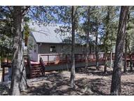 233 Park View Drive Woodland Park CO, 80863