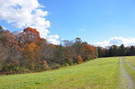 0 Coleman Cliff Road Frankford WV, 24938