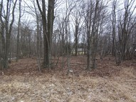 Rt 940 Lot 106 Pocono Summit PA, 18346